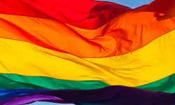 BP DIAZ ANNOUNCES LGBTQ NEEDS ASSESSMENT SURVEY