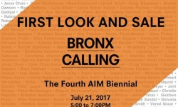 The Bronx Museum of the Arts Presents: Fourth Edition of Artist in the Marketplace