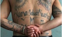 MS-13 gang members tattooes. Credit: ibtimes.co.uk