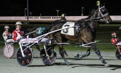 Yonkers Raceway saw Hugh Hefner 'come alive', as Hugh Hefner N., a nine year old pacer, won the seventh race of the night on September 28. Driver Jason Bartlett smiling in amazement. (Credit Gabriela Trmal)