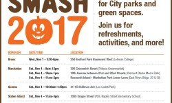Pumpkin Smash, 2017!