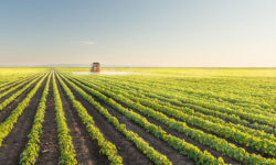 Texas to Receive $2.24 Million in USDA Farm Bill Section 10007 Funding