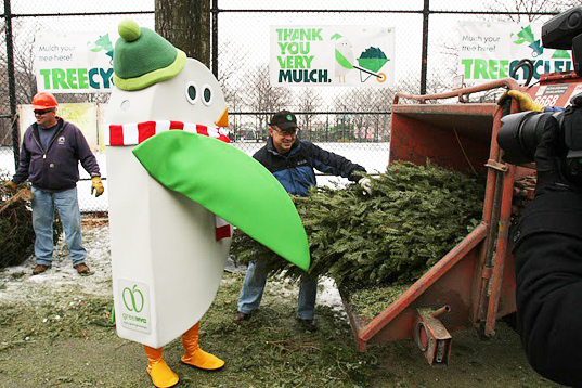 """""""Tree-cycling"""" Your Christmas Tree In NYC; Options Include"""