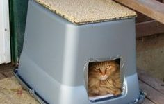 NYC Feral Cat Initiative Workshop: Building Shelters for Outdoor Cats – January 4