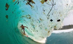Grappling with Ocean Plastic Pollution: Past, Present and Future. (Monterey Bay Aquarium)