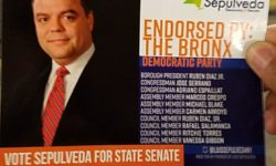 Sepulveda 4 Senate card (Credit: Michael Benjamin)