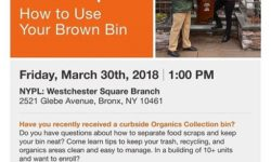 Community Workshop: How to Use Your Brown Bin – March 30