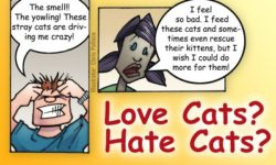 Enhancing Neighborhood Relations Surrounding Community Cats – April 17