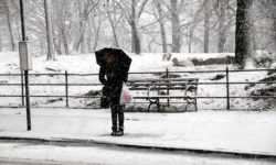 A lone woman waits for a bus during storm on Bronx Park East.--Photo by David Greene