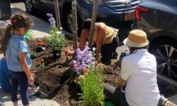 Bedford Park Elementary School (PS77) Tree-Gardening Event Encourages STEM Learning and Community Building