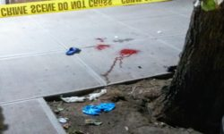 Latest Bronx Shooting