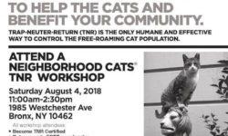 Neighborhood Cats TNR Workshop – August 4