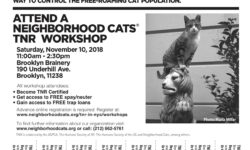 Brooklyn TNR Workshop – Saturday November 10th