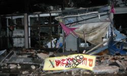 Ten years ago this week a fire destroyed a row of stores along Westchester Avenue. Destroyed in the fire was a popular pet shop, sadly many of the animals perished.--Photo by David Greene