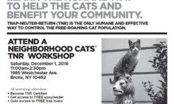 Neighborhood Cats Bronx TNR Workshop – Dec 1st