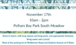Join us on our last volunteer outing of the season at Pelham Bay Park – Nov 17