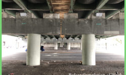 Beautifying the 85th Assembly District | Restoring the Rosedale Avenue Underpass