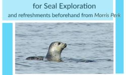 Seal Exploration