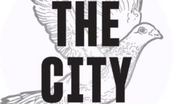 THE CITY is an independent, nonprofit newsroom dedicated to hard-hitting reporting that serves New Yorkers. Get our newsletter: http://bit.ly/thecityny