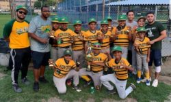 Castle Hill Little League Adds Another Championship