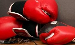 Boxing Continues As Others Prepare To Resume