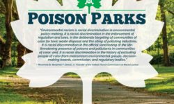 POISON PARKS: The toxic effect of Roundup in city parks