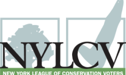 NYLCVEF Holds CD-15 Virtual Environmental Candidate Forum