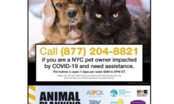 COVID19 NYC Pet Support