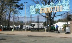 The East entrance to the Bronx Zoo at Boston Road off the Bronx River Parkway is set up for Drive-through testing