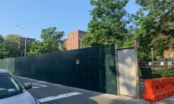 NYCHA indifference at Watson Avenue & Thieriot Ave Bronx