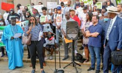 Monday Anti Gun Violence Rally at Bronx Courthouse